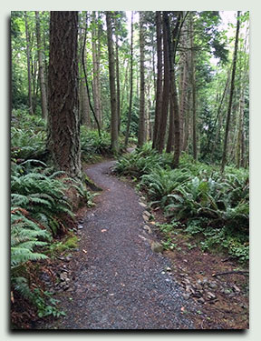 trail-1
