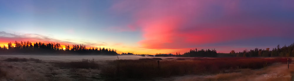 Guemes Island Sunrise